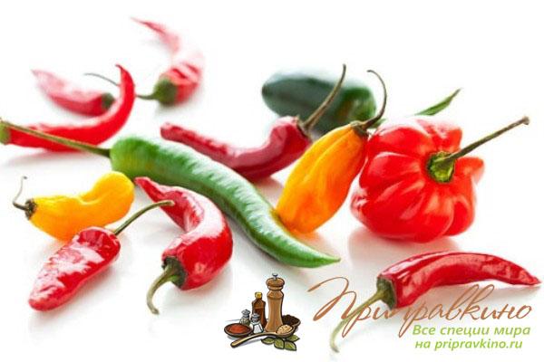 Комнатный перец Чили: выращивание на подоконнике, уход