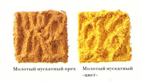 Отличие мациса от мускатного ореха