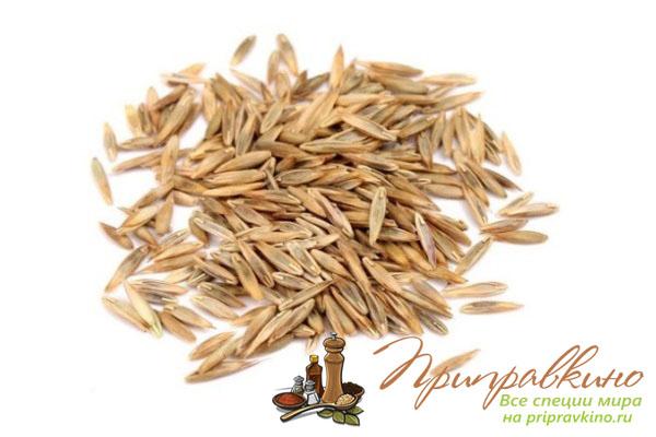 Семена лемонграсса – фото